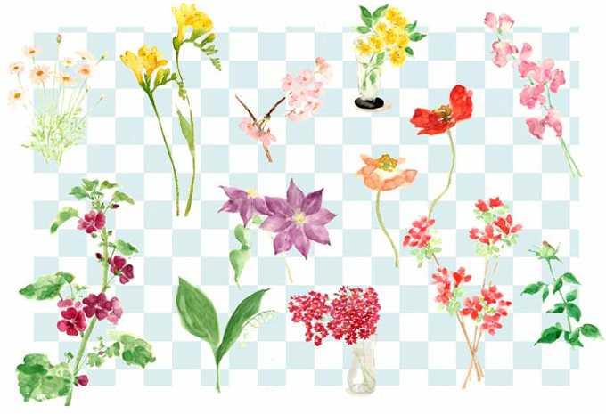 四季,花,植物,水彩画,イラスト,素材