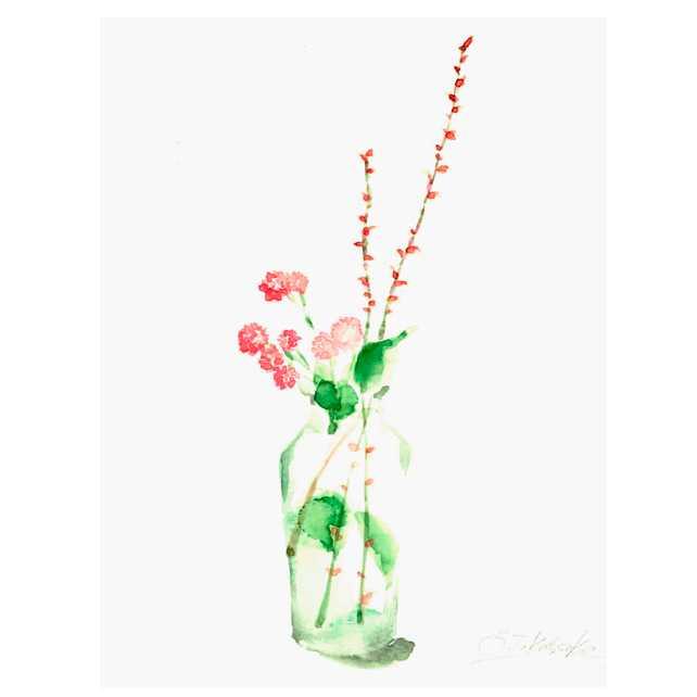 花,秋,高塚由子,Yoshiko,Taaktsuka,水彩画,Watercolor,イラスト,素材