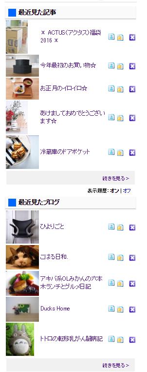 にほんブログ村 閲覧履歴サービス
