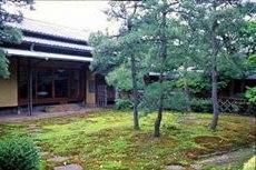 杉苔の美しい庭