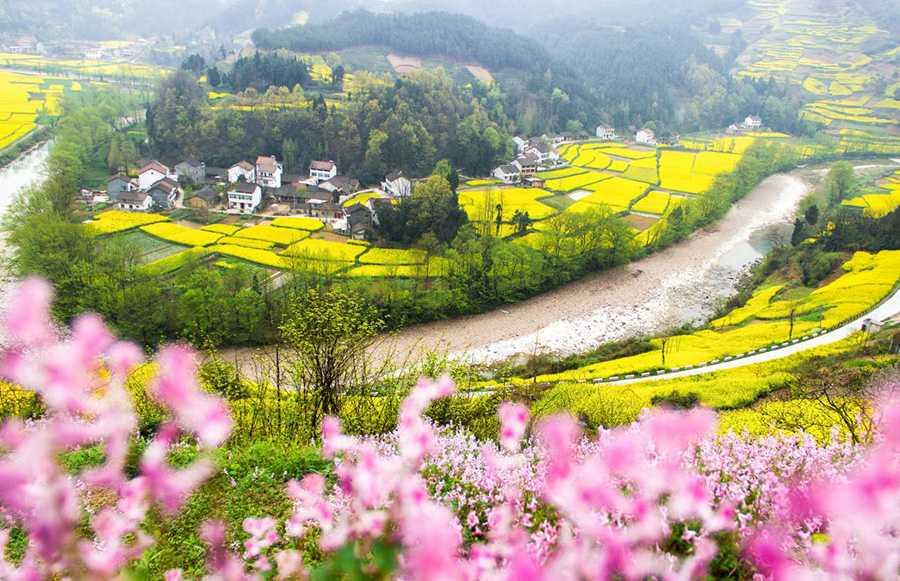 三国の聖地で菜の花に魅了=陝西省勉県 - 西安金橋国際旅行社(中国金橋 ...