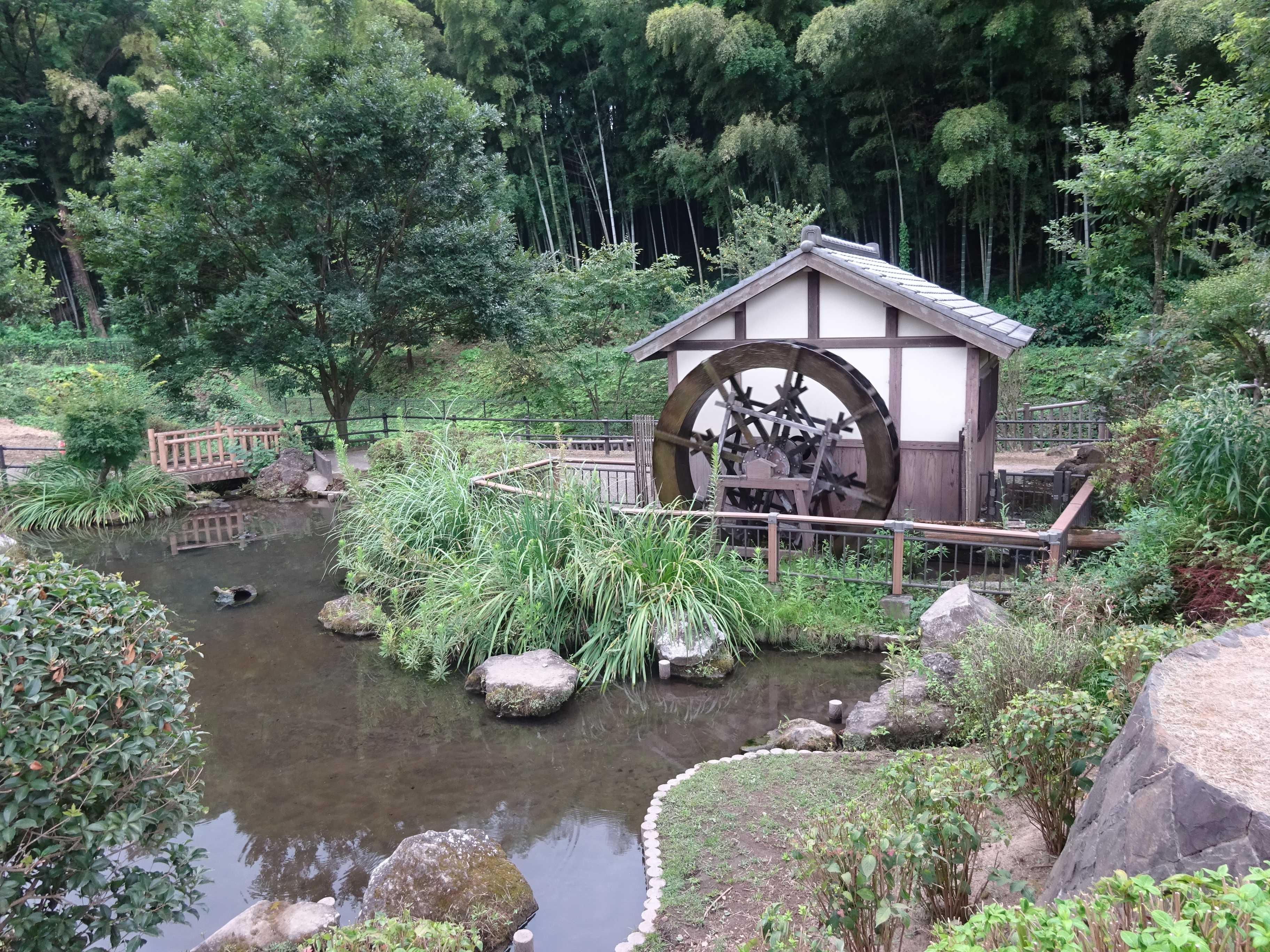 公園 親水 上 谷戸