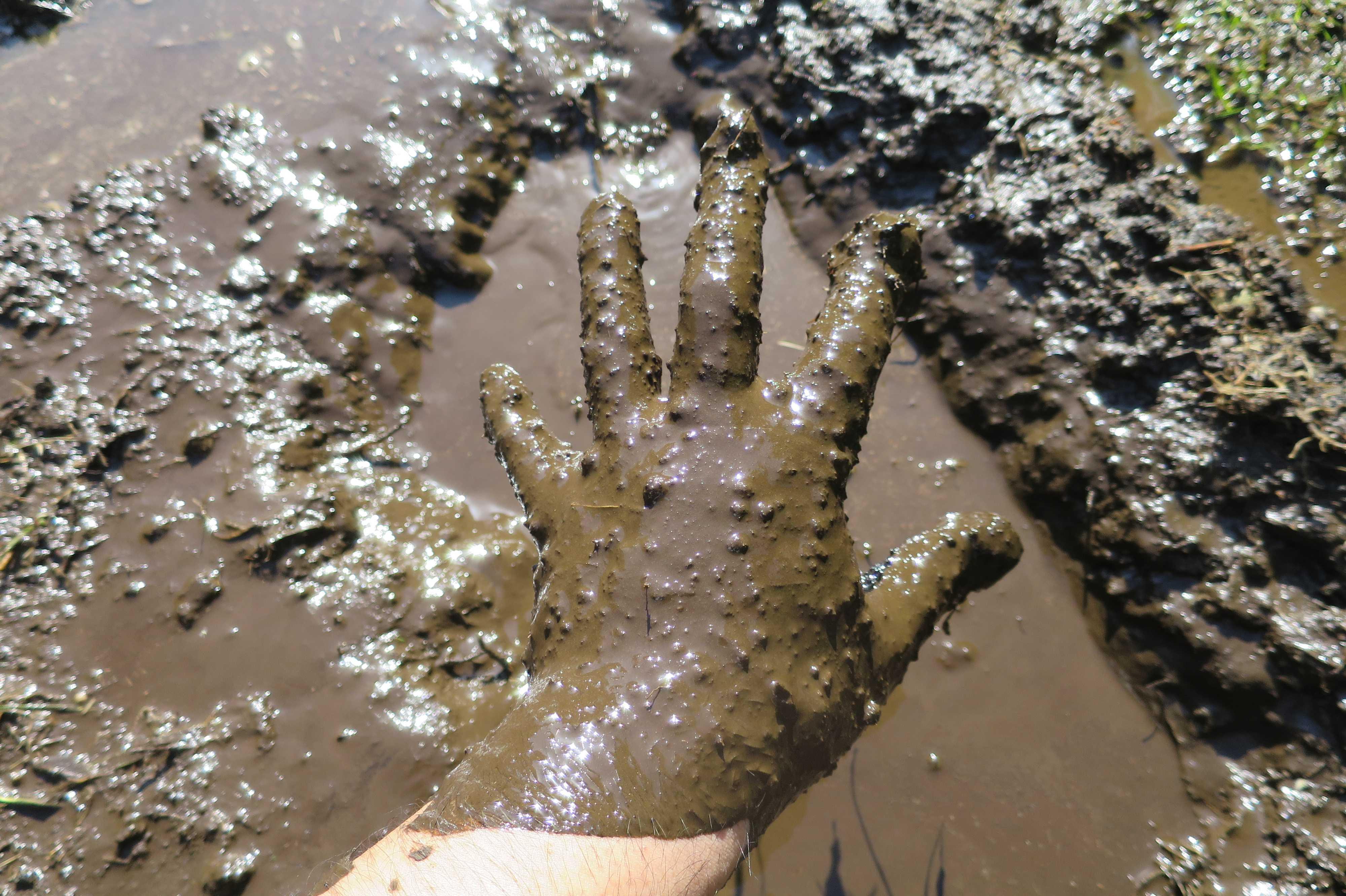 どろだらけ - 泥んこ遊び