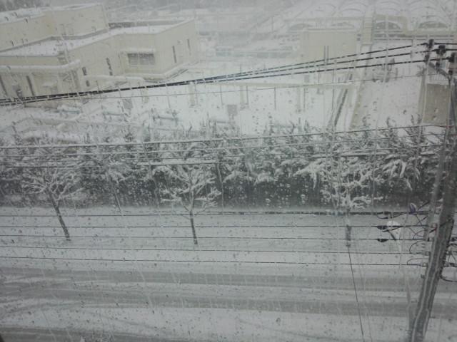 平成26年/2014年 2月8日の大雪 東京都八王子市北野町の様子