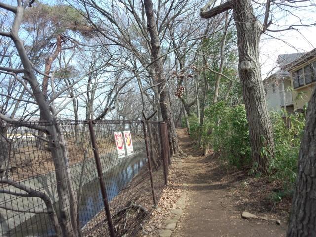 玉川上水脇の遊歩道