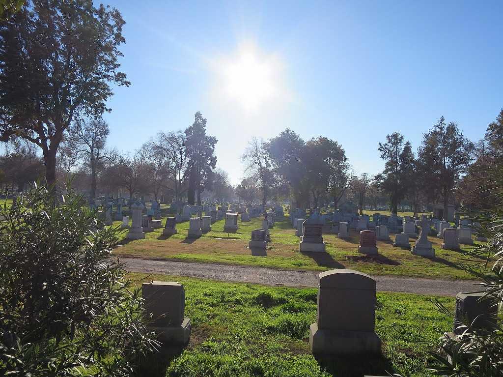 お日様に照らされるホーム・オブ・ピース墓地(サンノゼ)