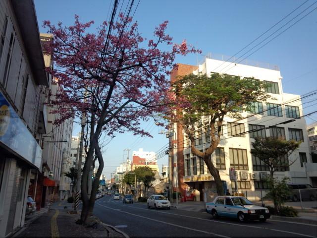 那覇市内の通り