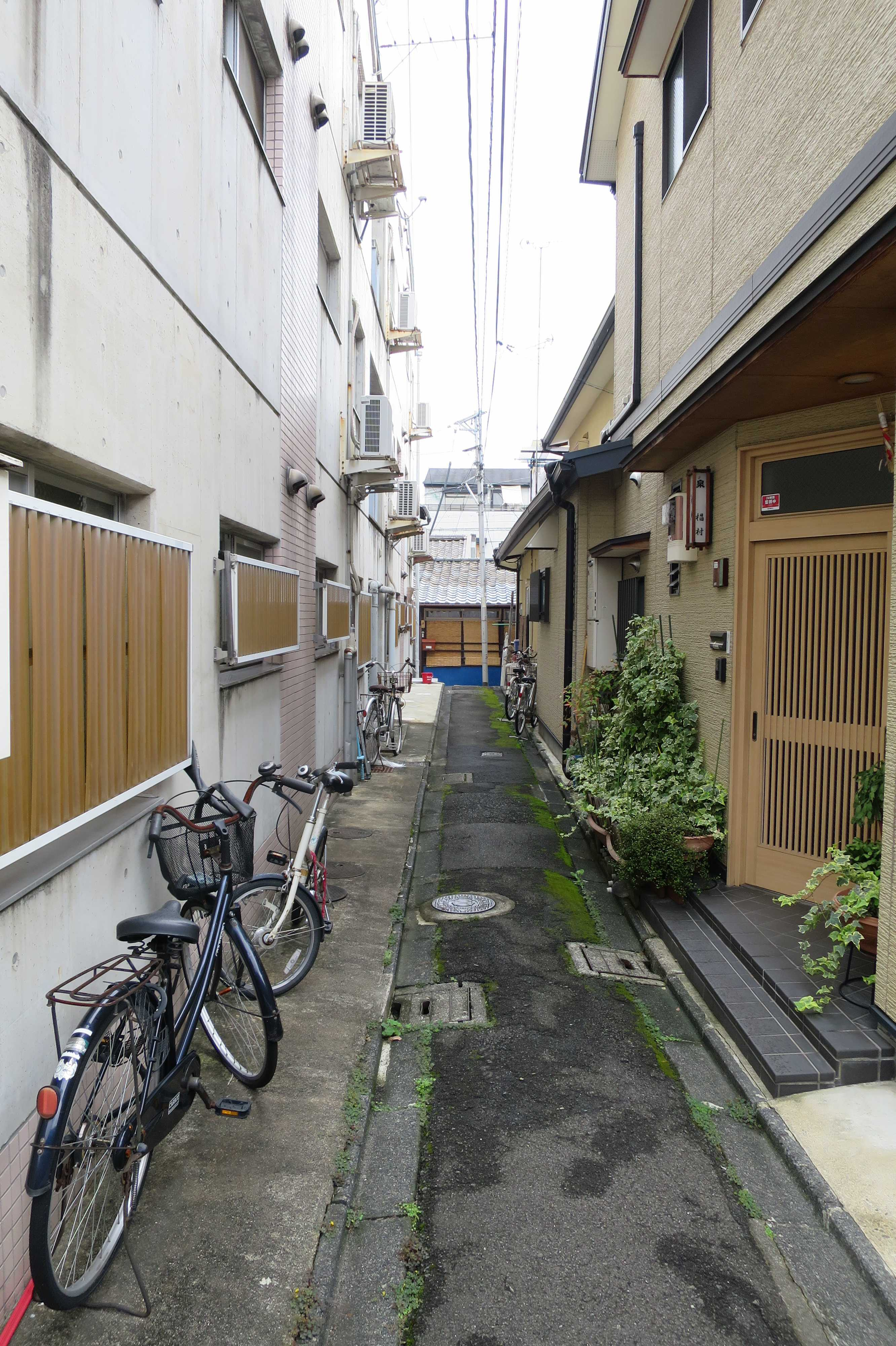 京都 - 路地の突き当たりの一段低いすだれの家