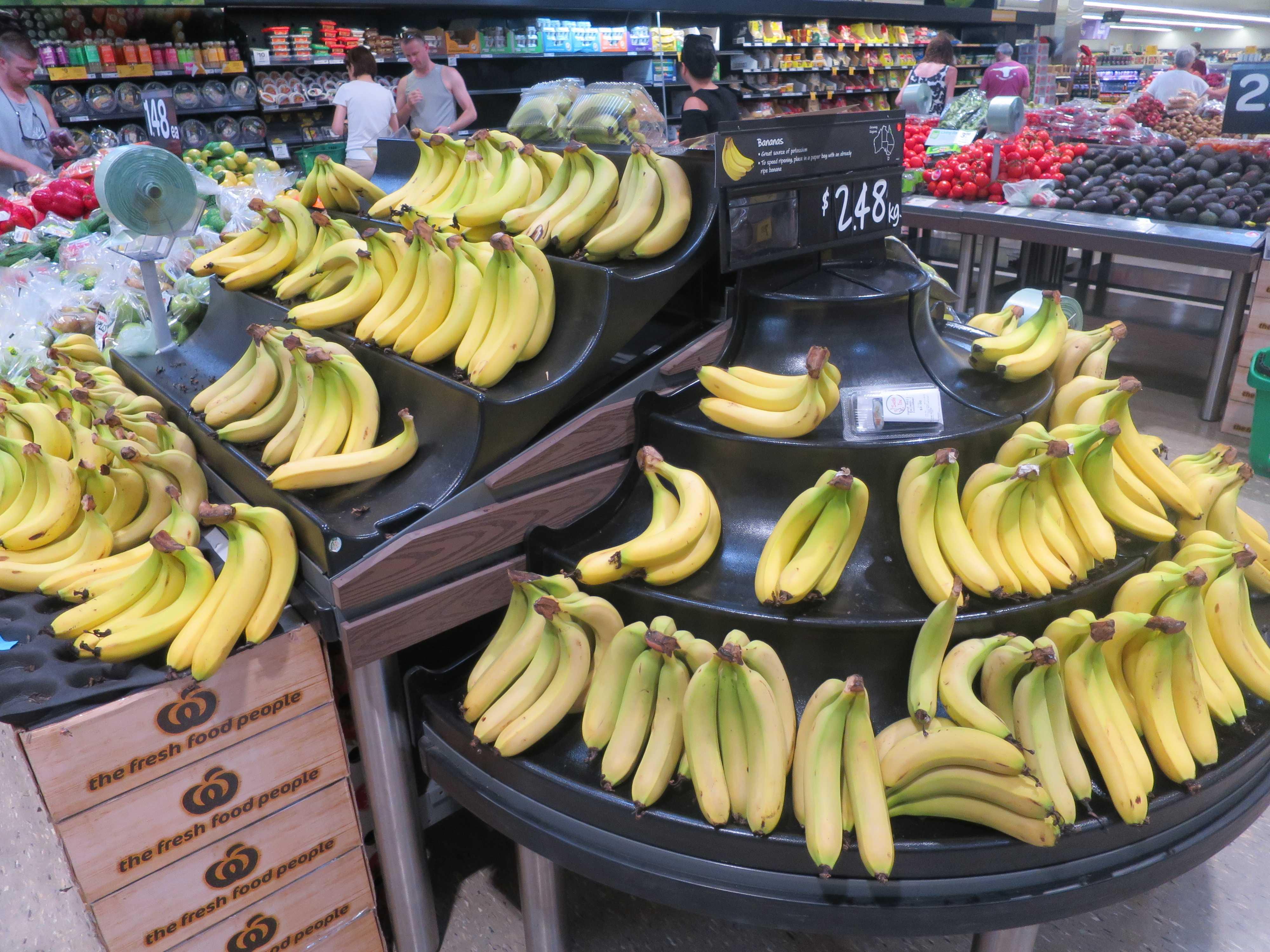 オーストラリアバナナ