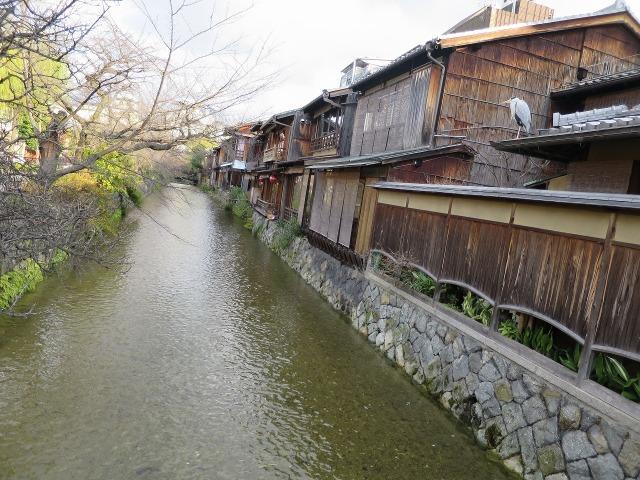 祇園白川沿い風景