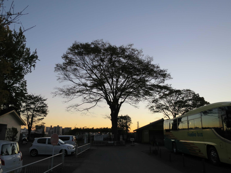 遊行寺の夕焼け