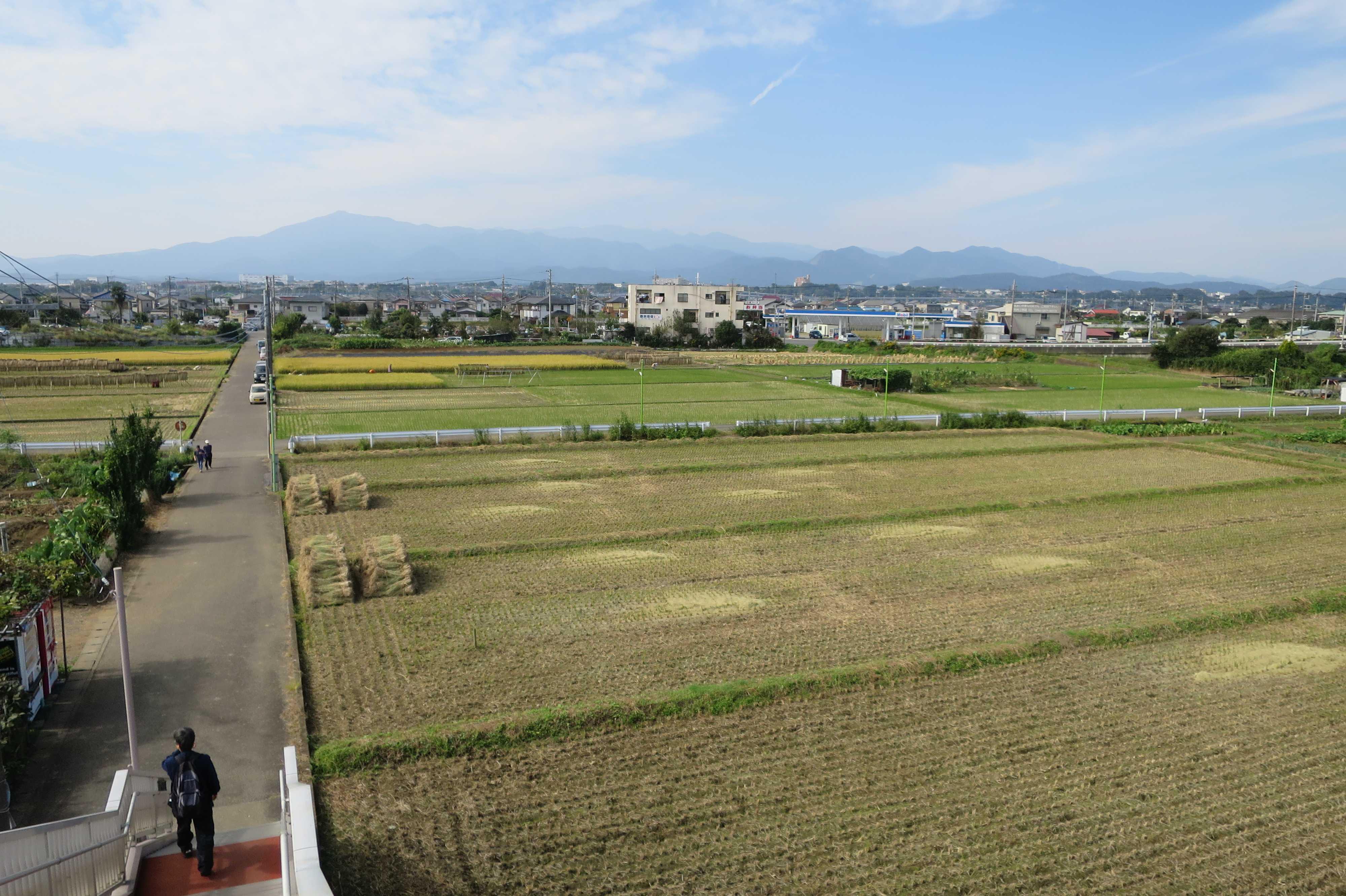 JR相模線 入谷駅(神奈川県座間市)から見た丹沢山塊