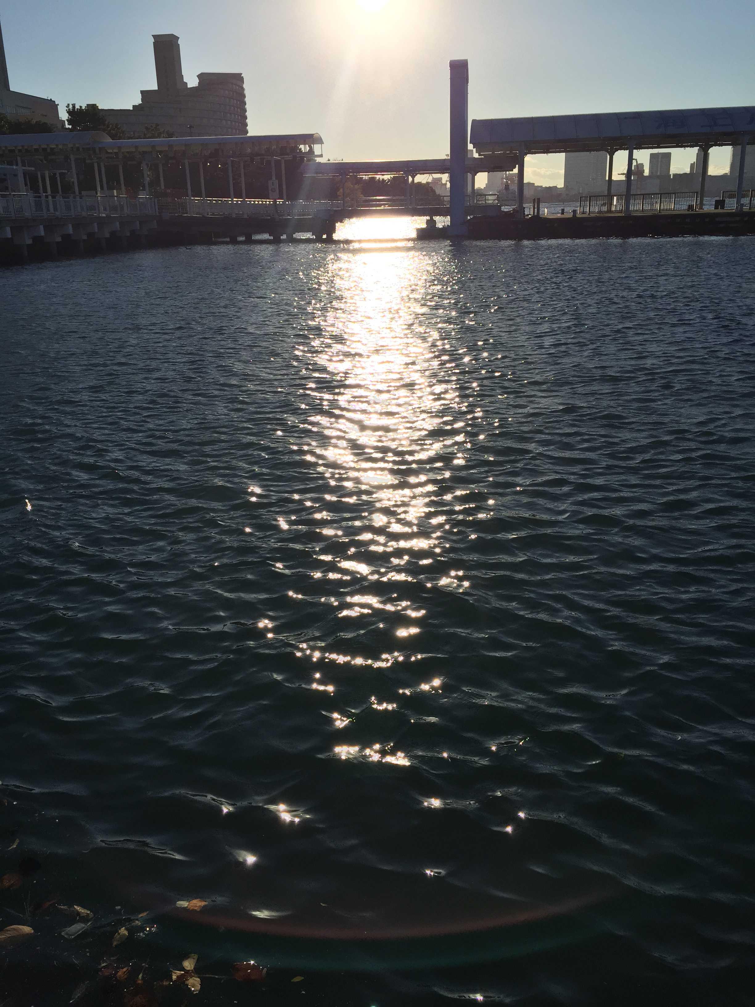 お台場海浜公園 - 桟橋横の海