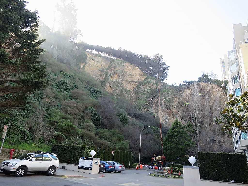 コイトタワーの崖(がけ)