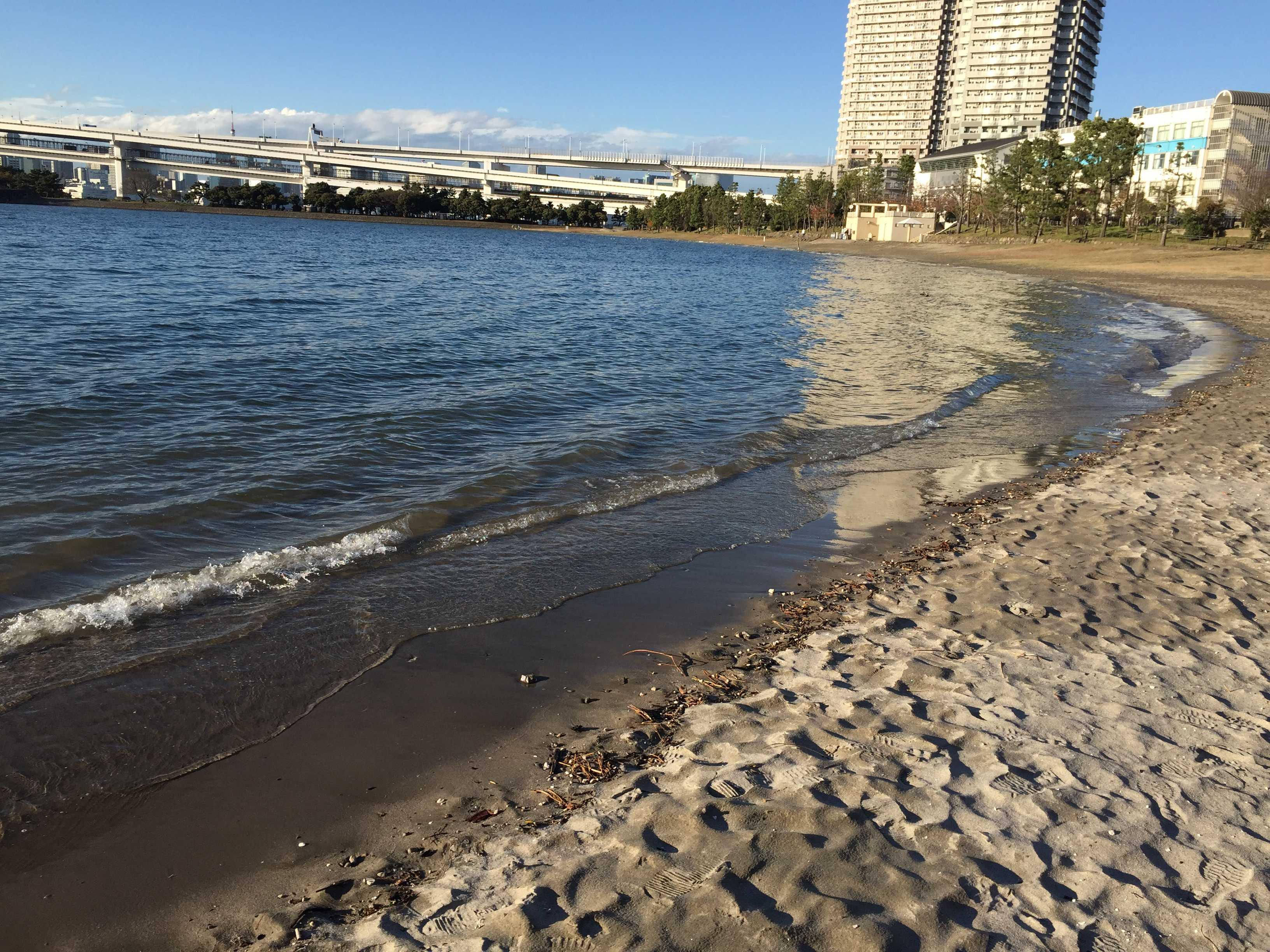 お台場海浜公園の波打ち際