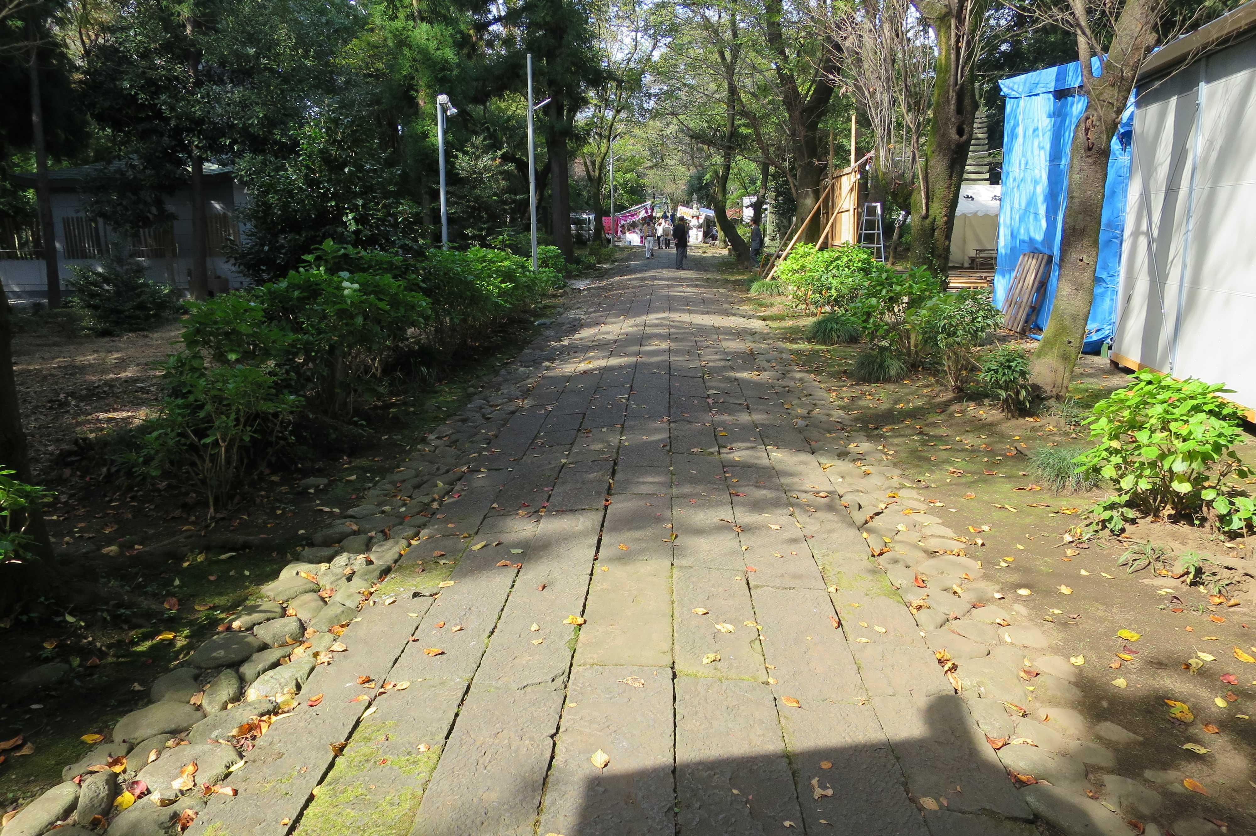 無量光寺の参道