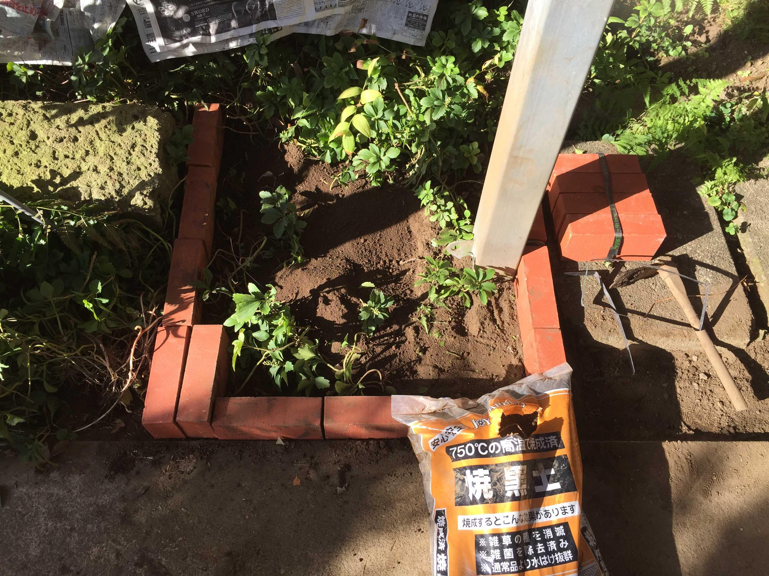ヤマユリの球根を植え付けする場所