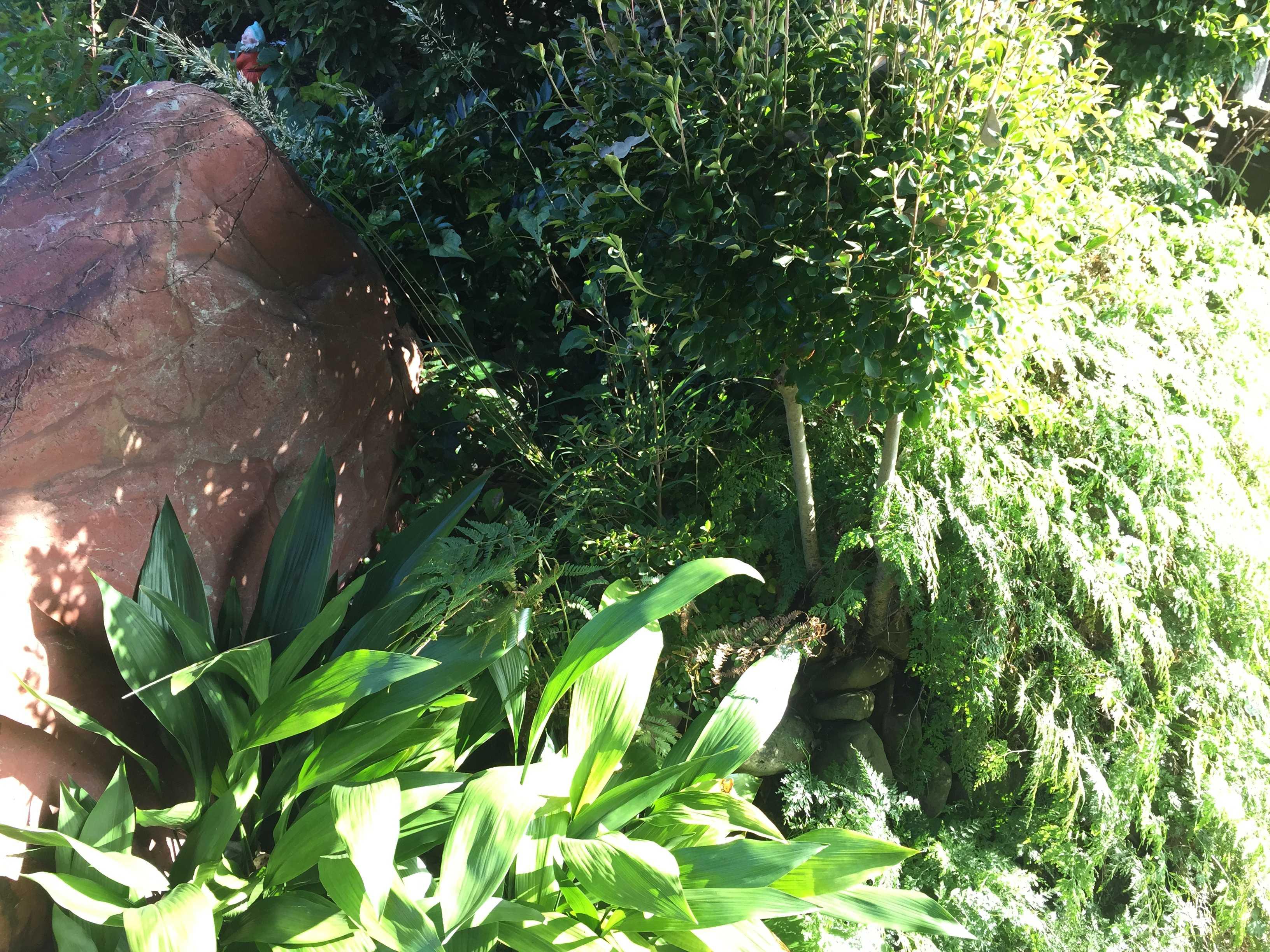庭木の茂み - やまゆりの球根の植え付け