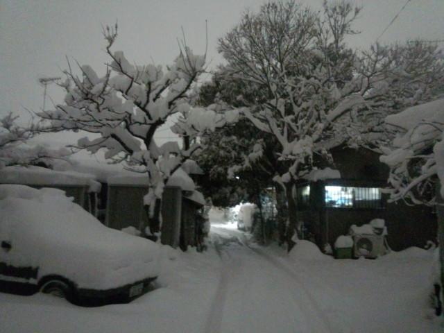 2014年/平成26年2月14日 大雪写真速報 in 東京・八王子