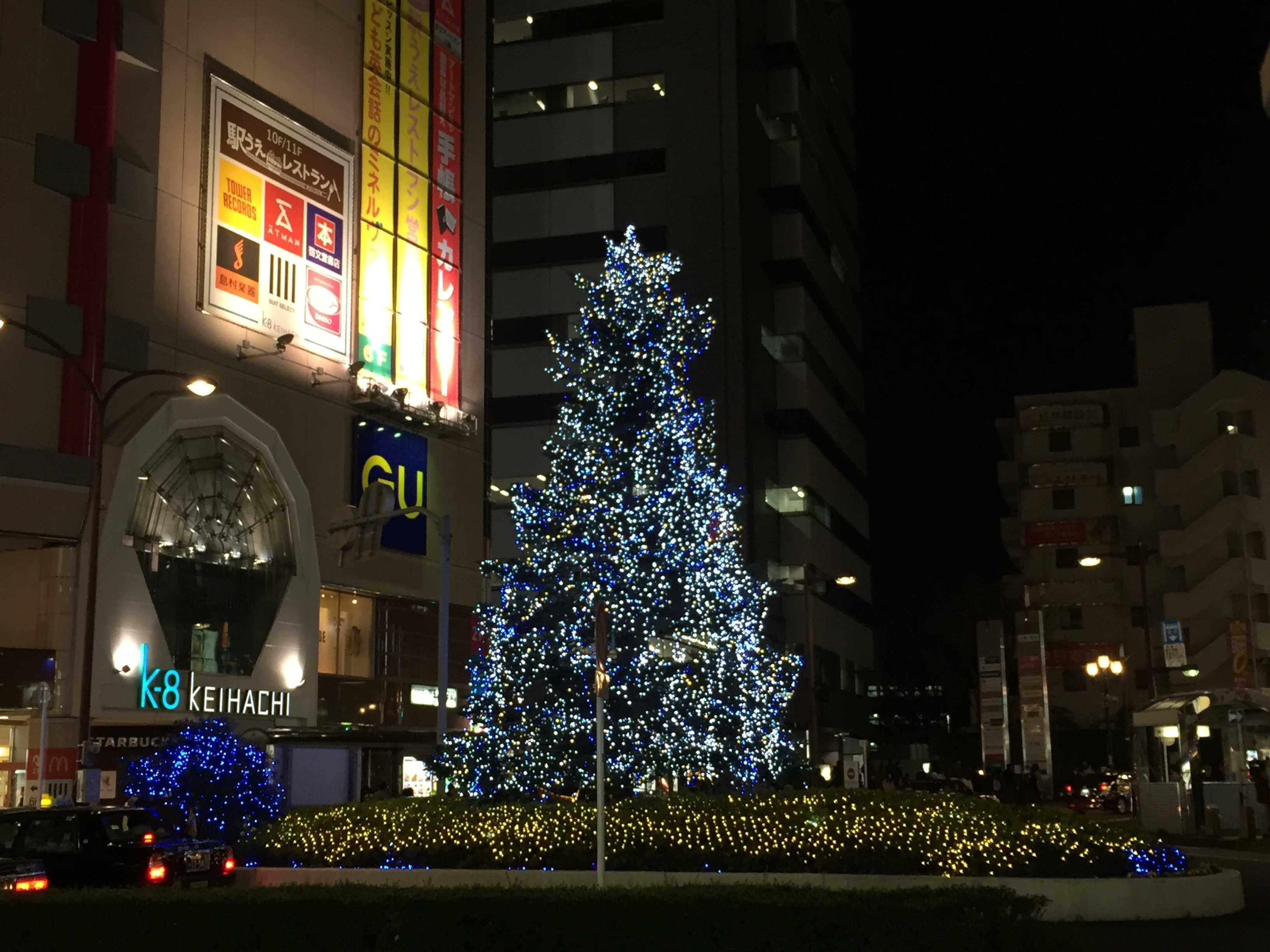 京八前のクリスマスツリー