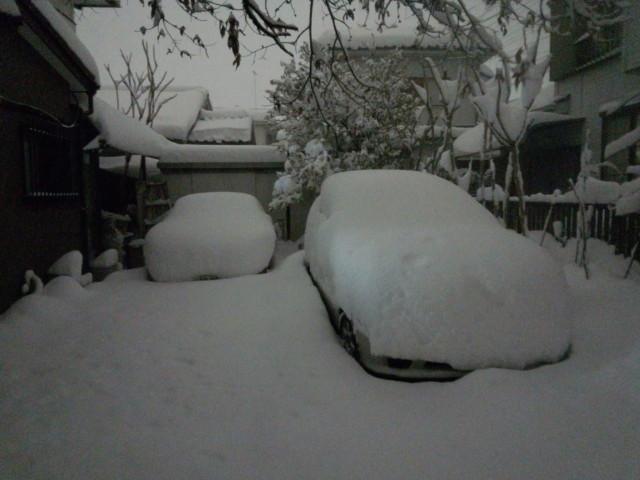 2014年/平成26年2月14日 大雪写真速報 in 八王子