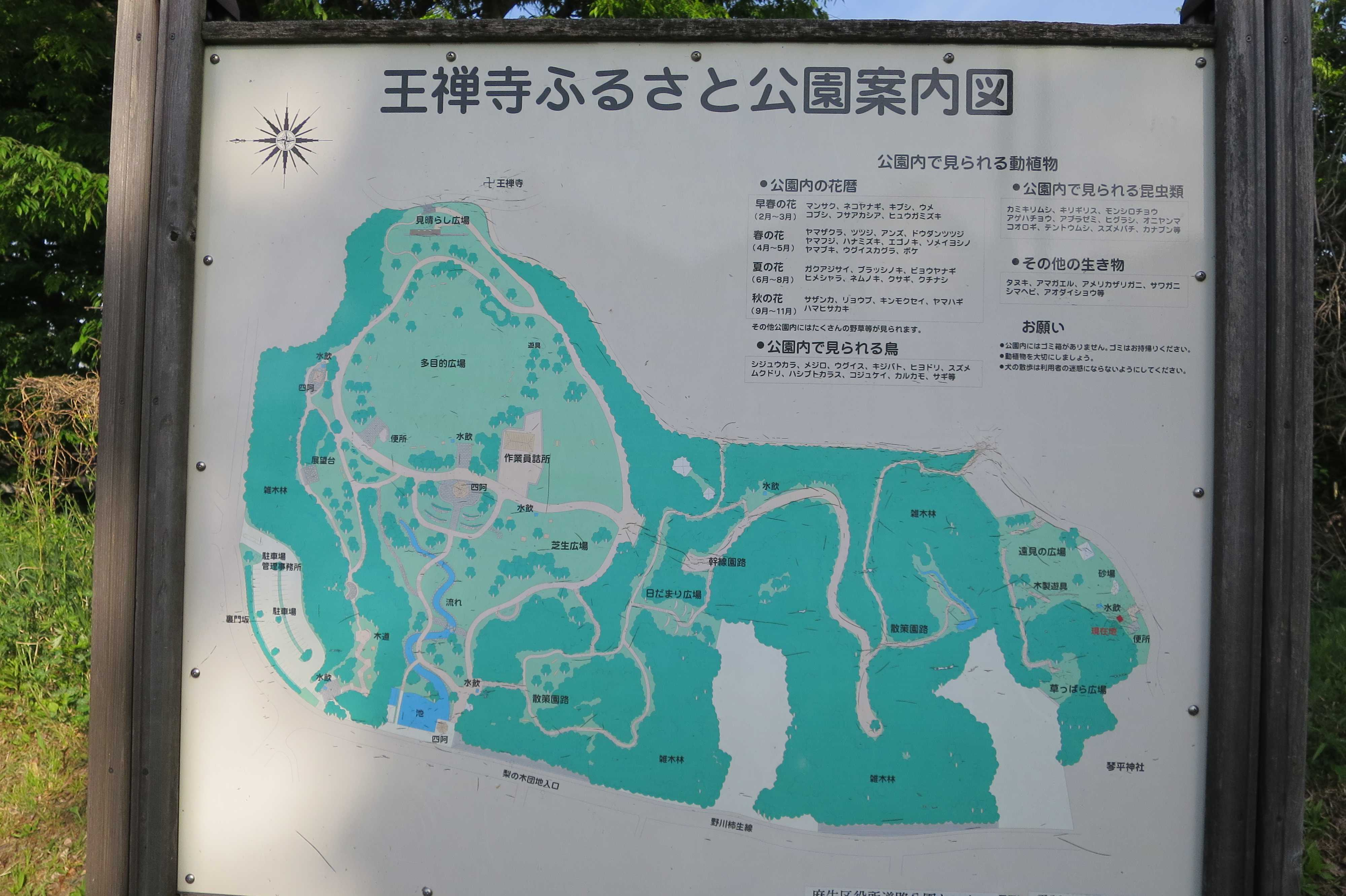 王禅寺ふるさと公園案内図
