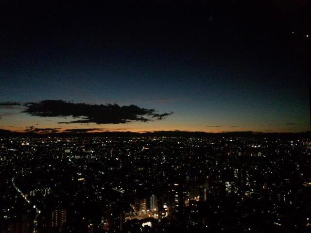 新宿のパークハイアットの夜景