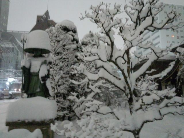 2014年/平成26年2月8日、大雪の記録写真(八王子)