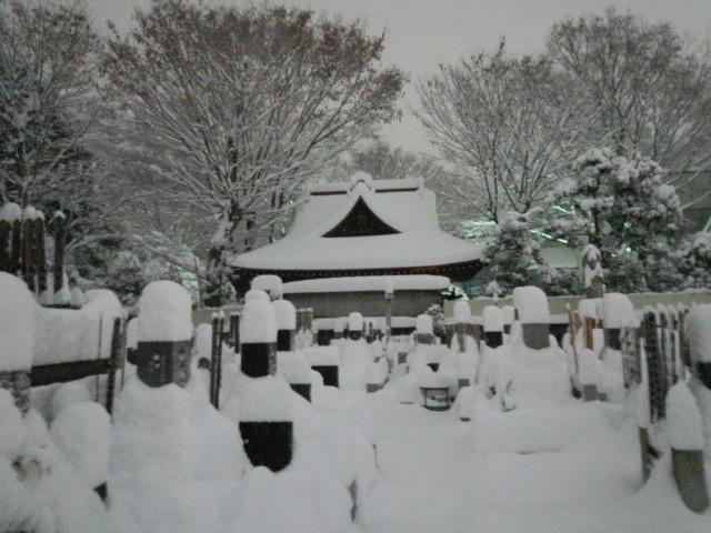 大雪の日の福伝寺境内
