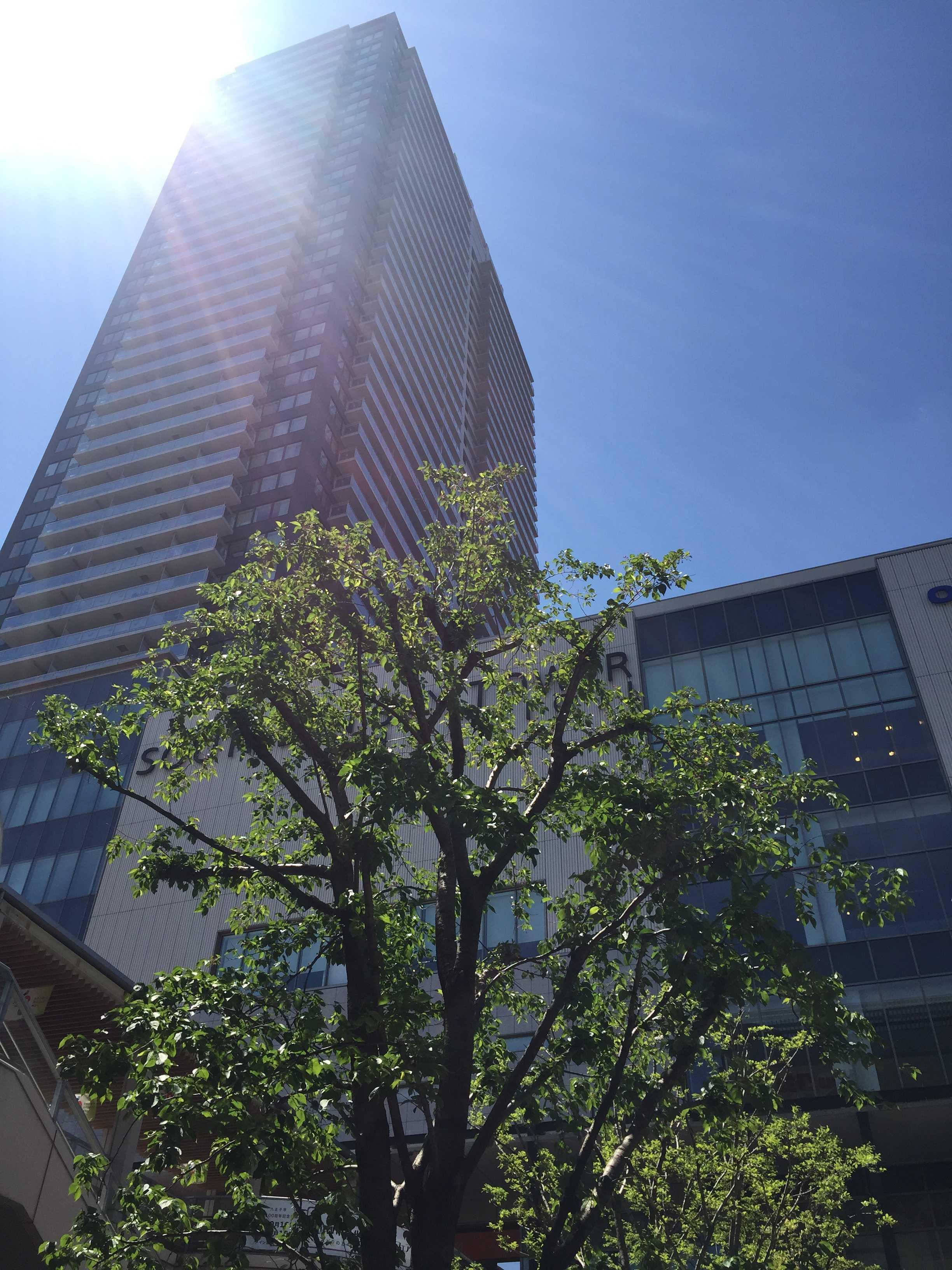 八王子駅南口 - サザンスカイタワー