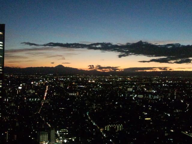新宿のトワイライト