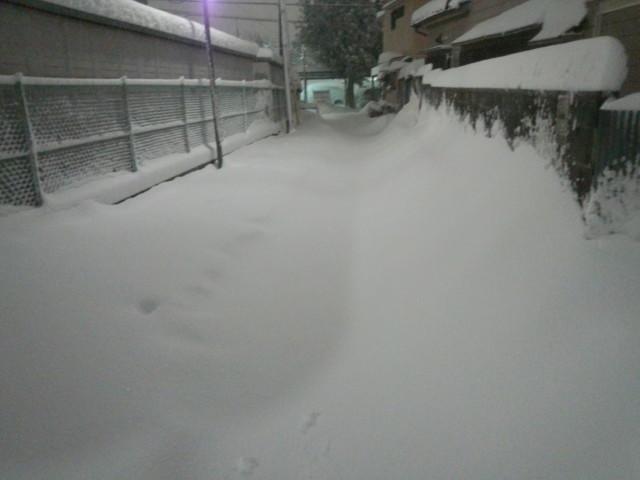 大雪の日の白い道(東京都八王子市)