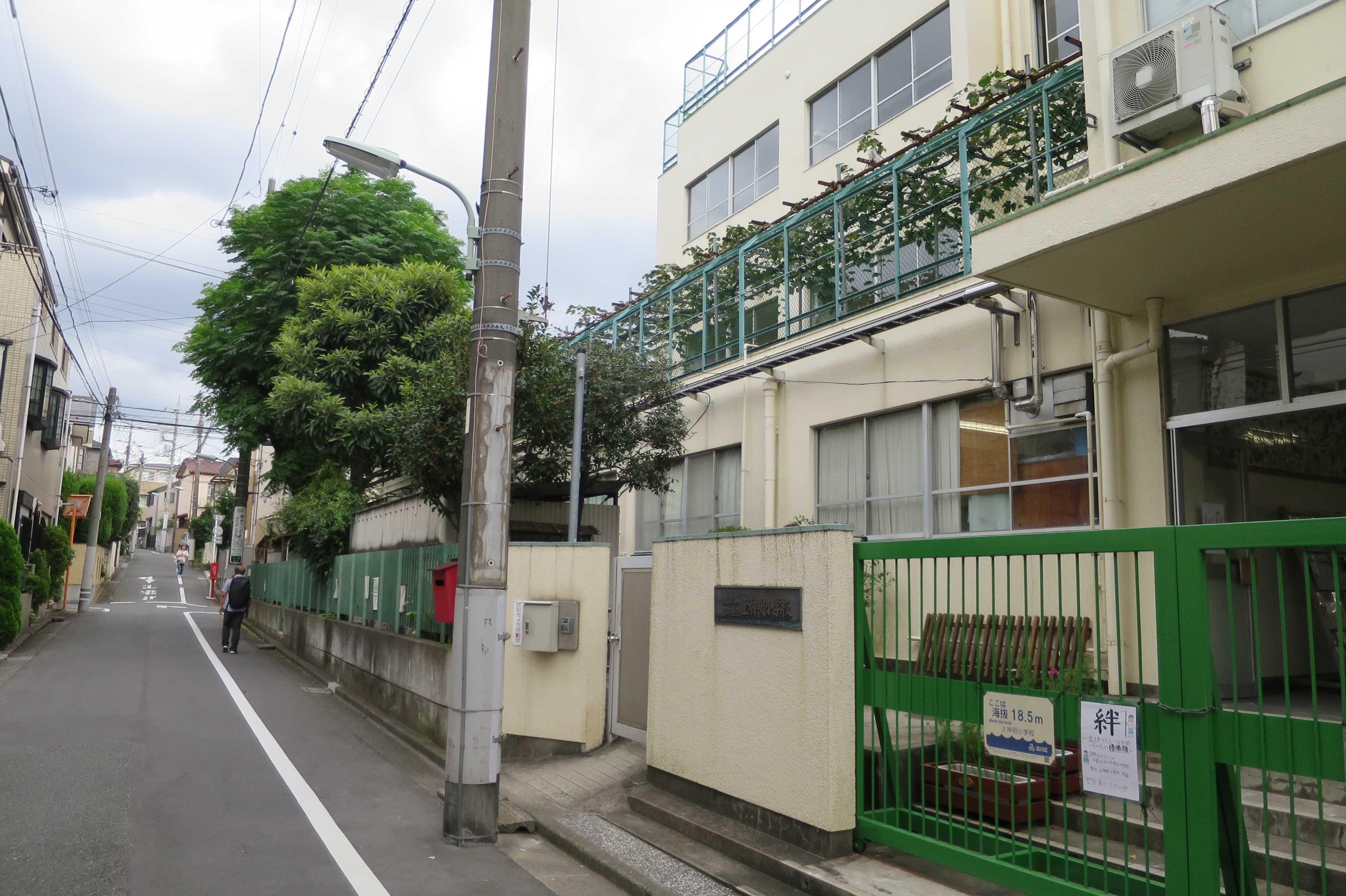 東京都品川区・上神明小学校のブドウ棚