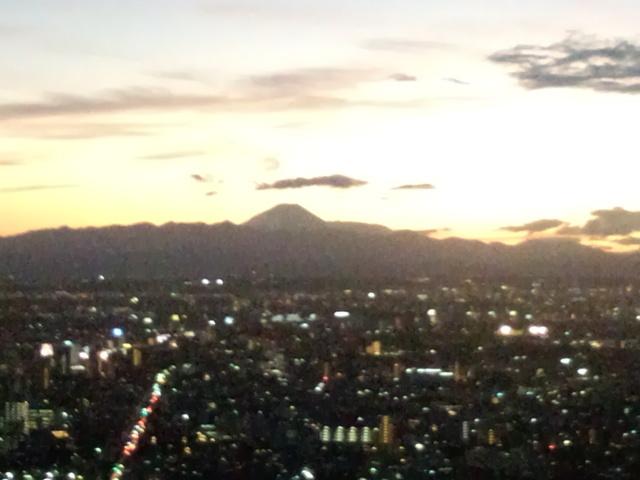 新宿から望む富士山