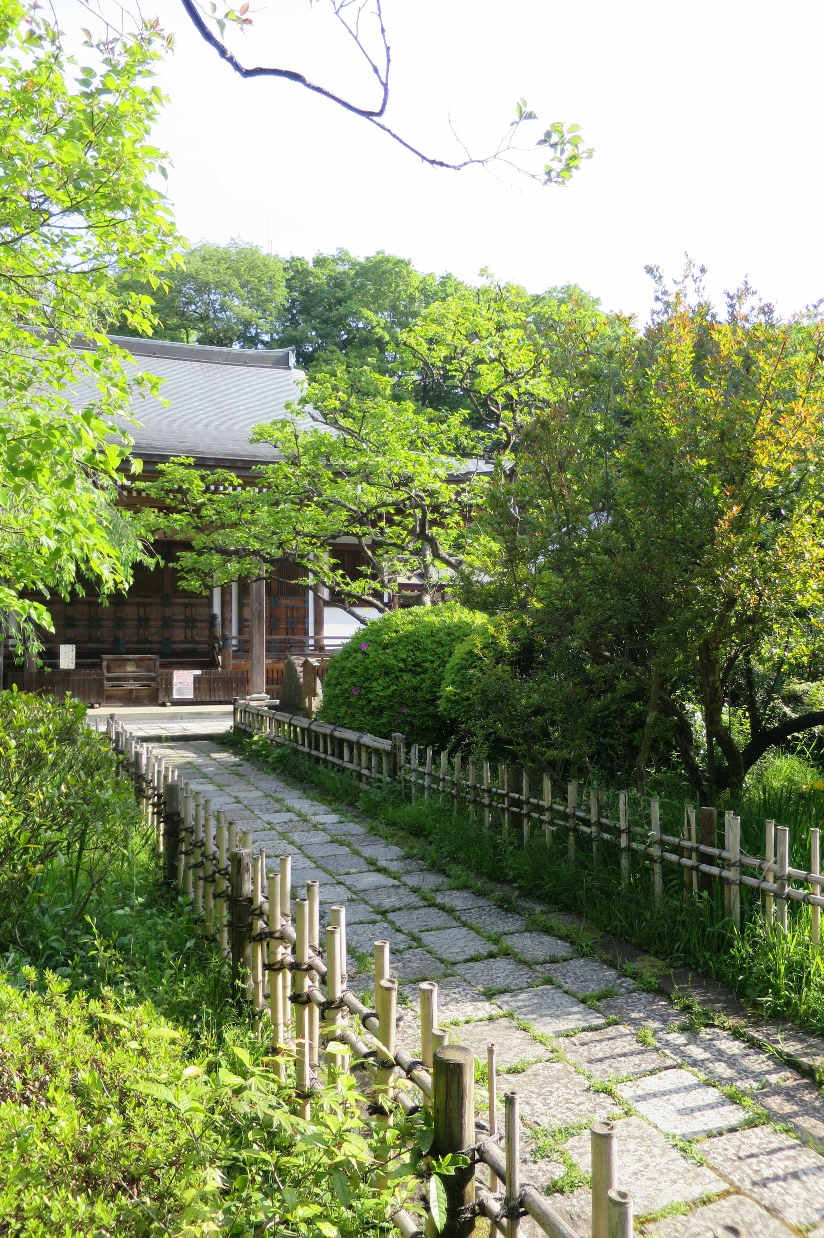 王禅寺 本堂と参道