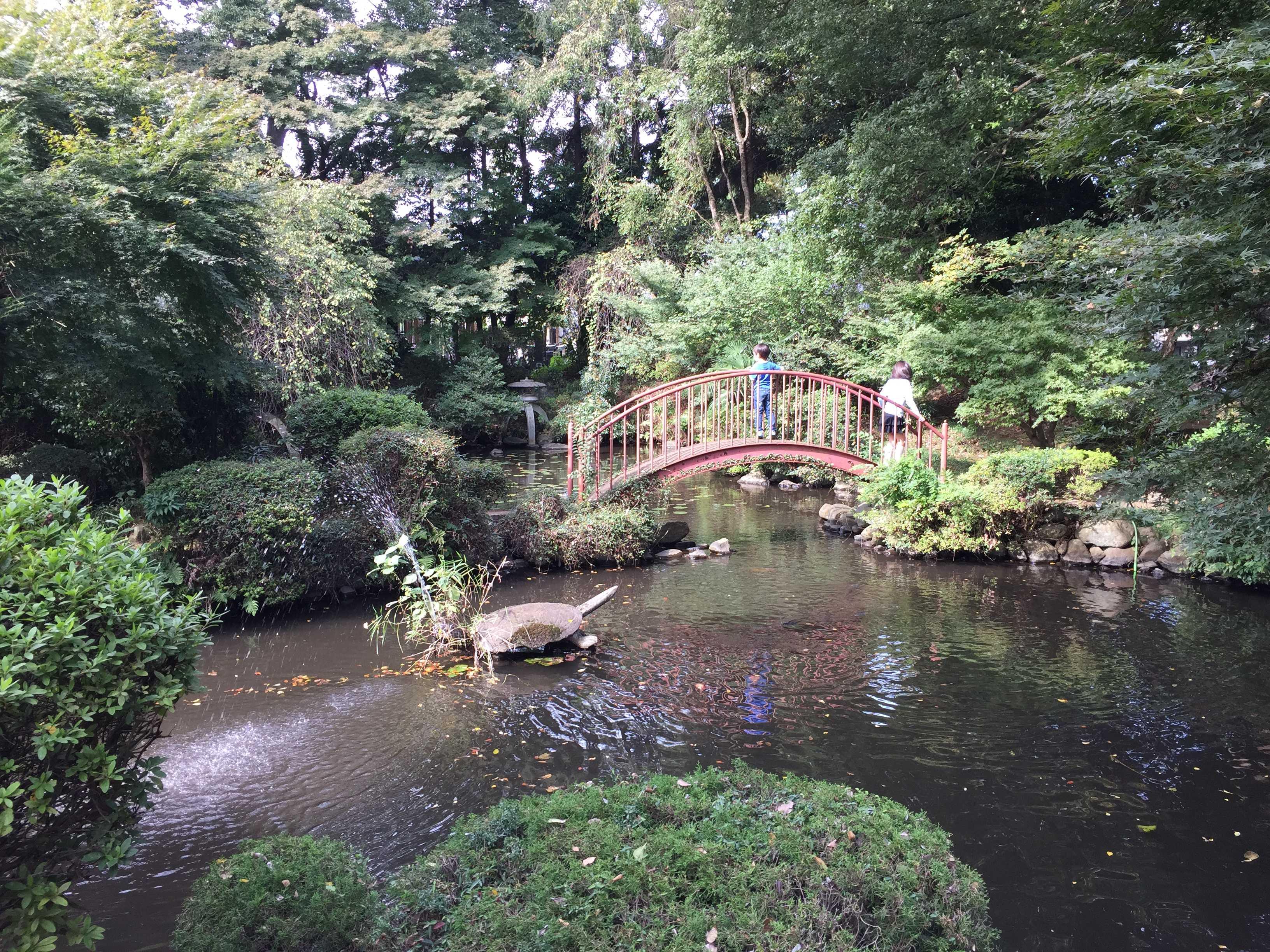 無量光寺 - 御影の池の太鼓橋