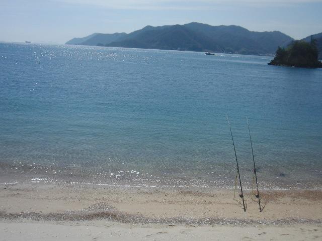快晴の向島の海岸線