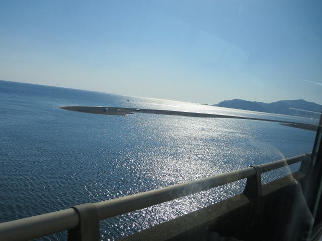 眩しい土佐(高知)の海