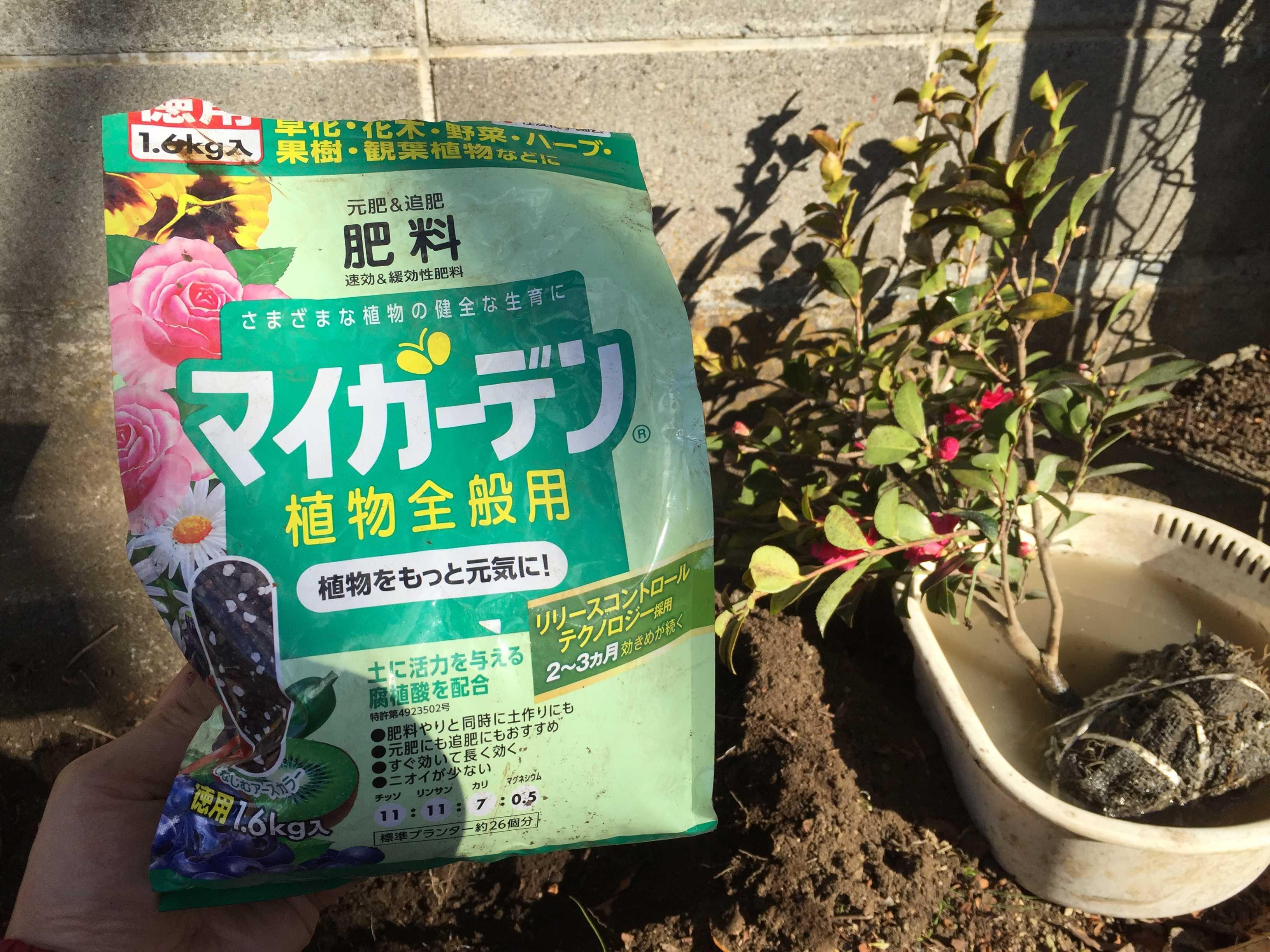 元肥 - マイガーデン植物全般用/住友化学園芸