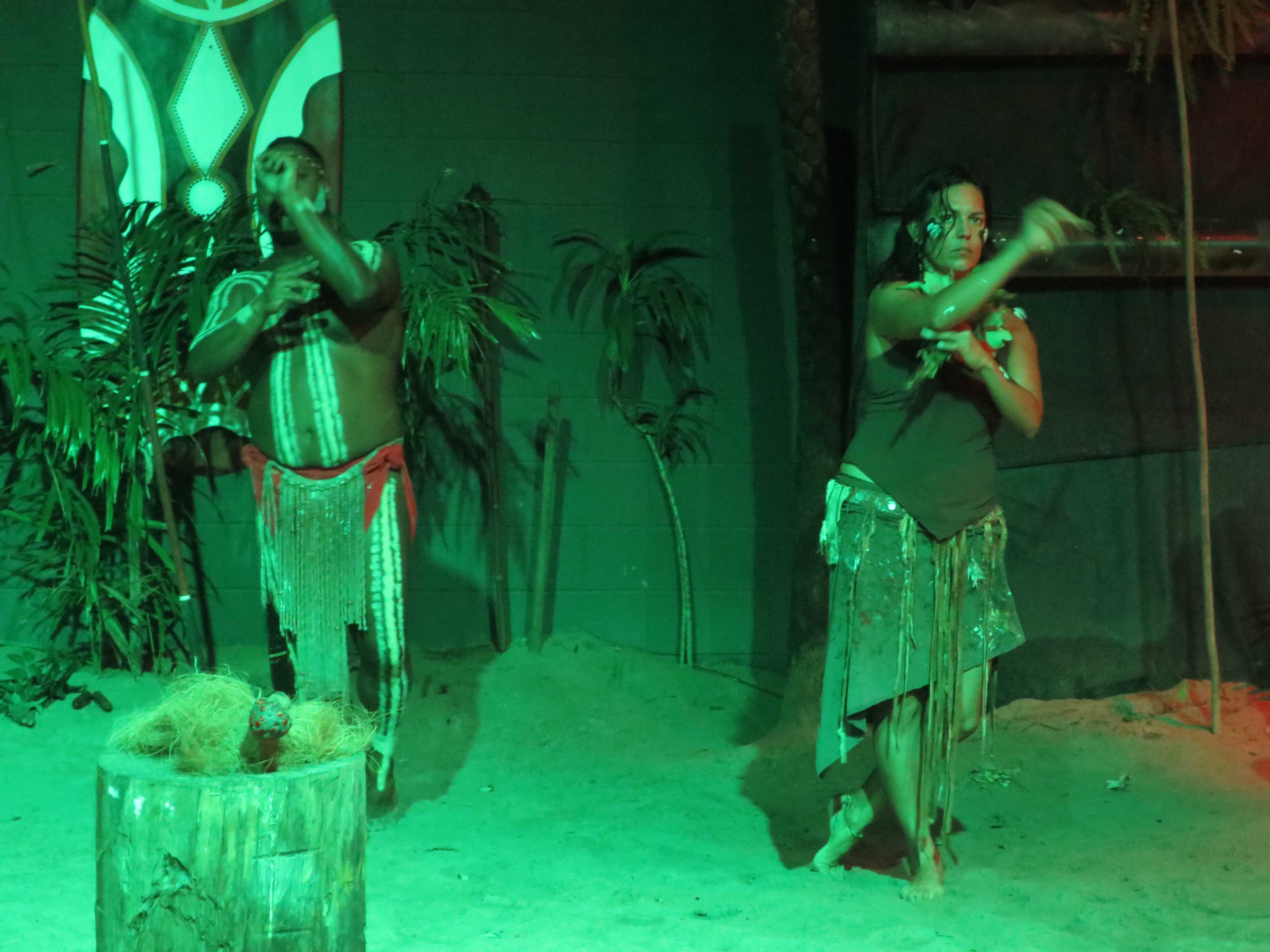 アボリジニの動物のダンス