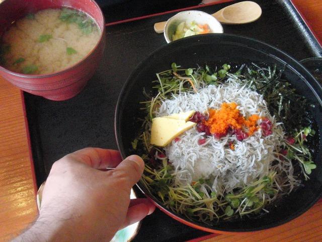 真鶴 - しらす丼定食