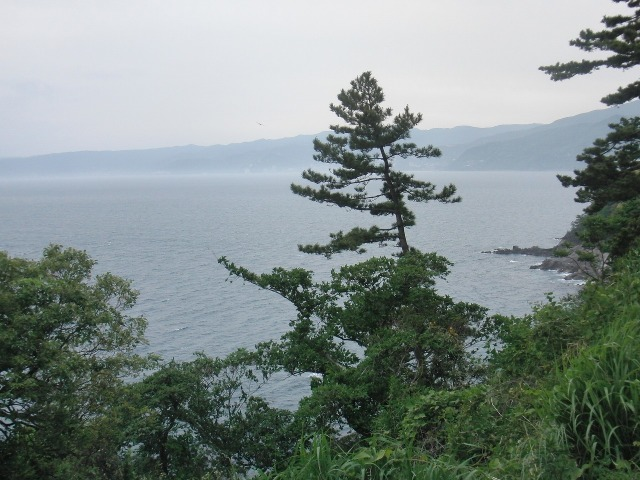 真鶴岬の大海原