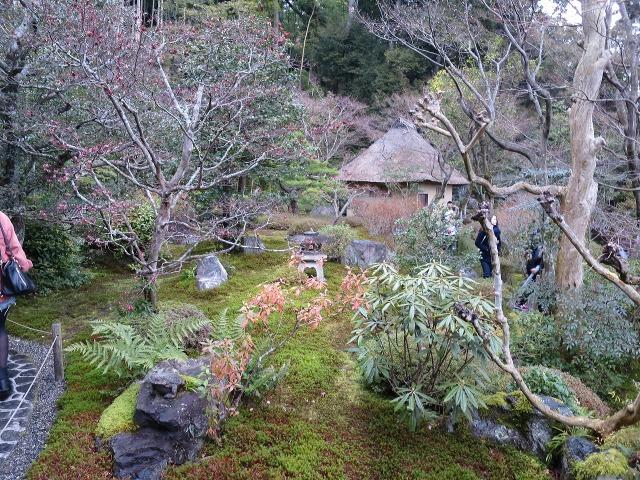 鈴虫寺(華厳寺)の庭園