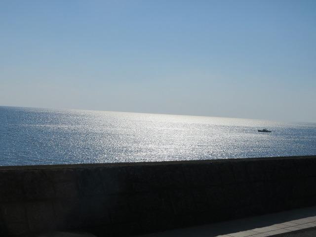 土佐(高知)のキラキラと輝く海