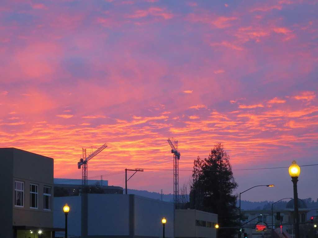 レッドウッドシティ - 真っ赤な夕日