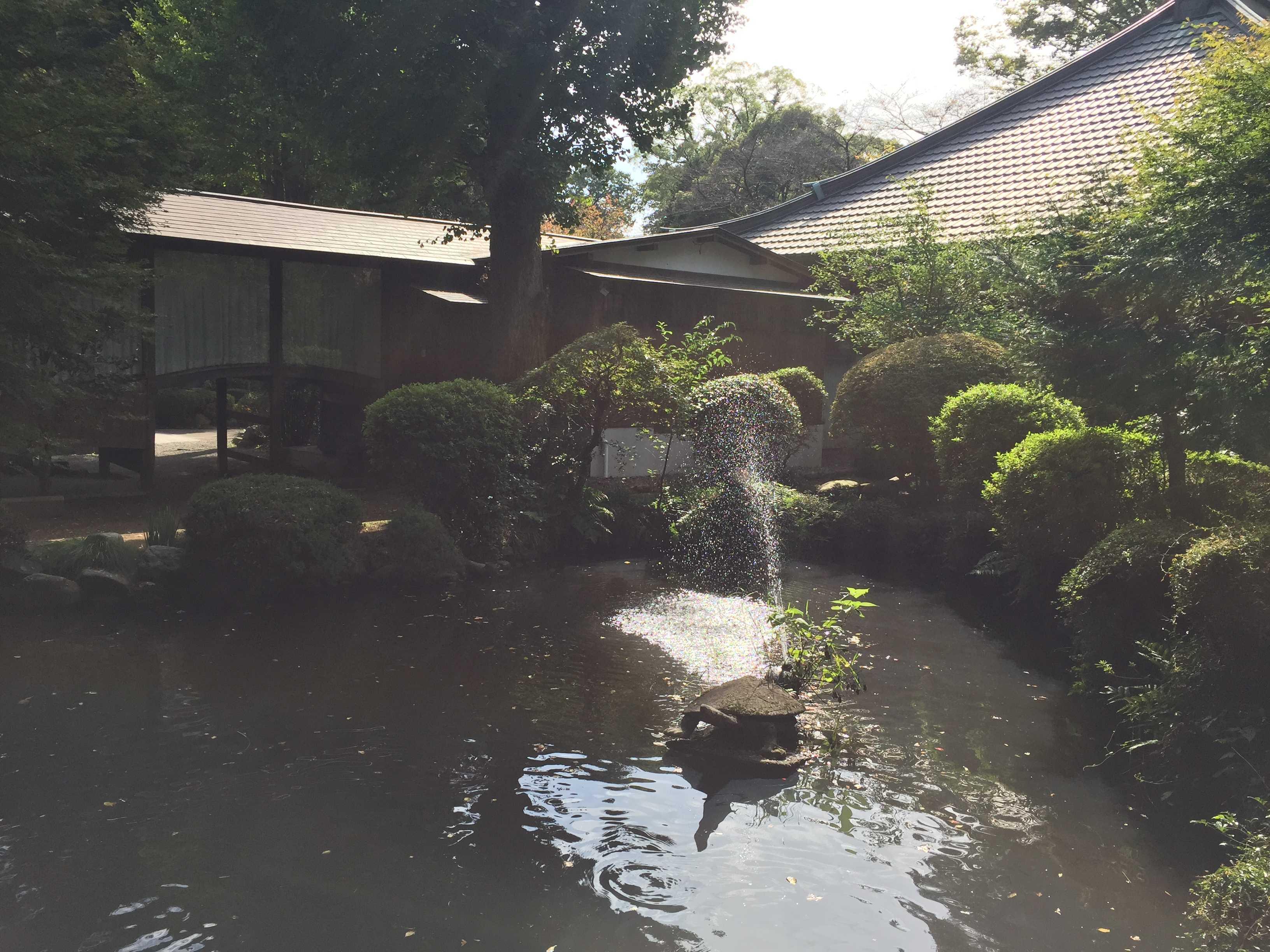 無量光寺 - 池の噴水