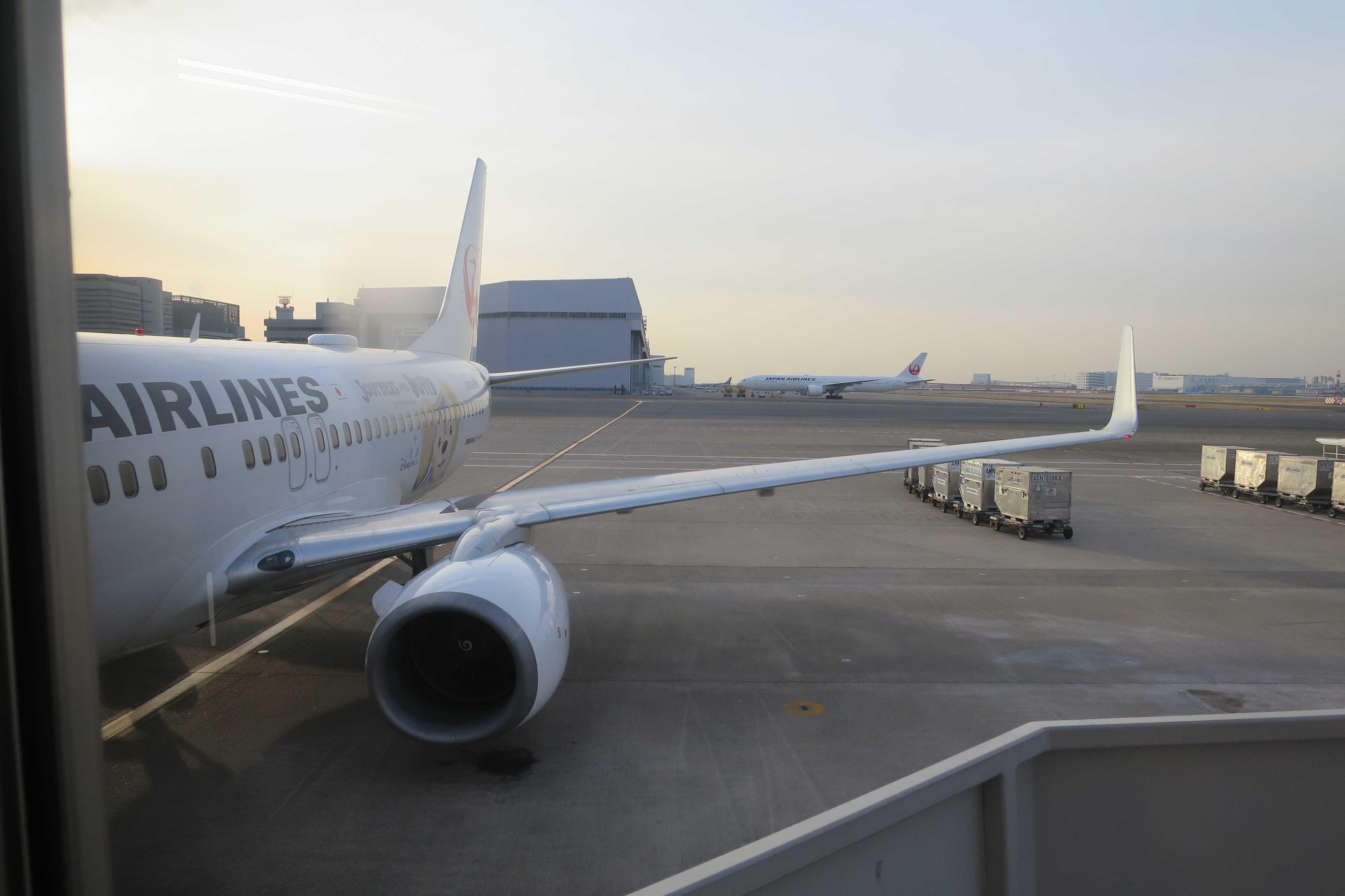 JAL475便
