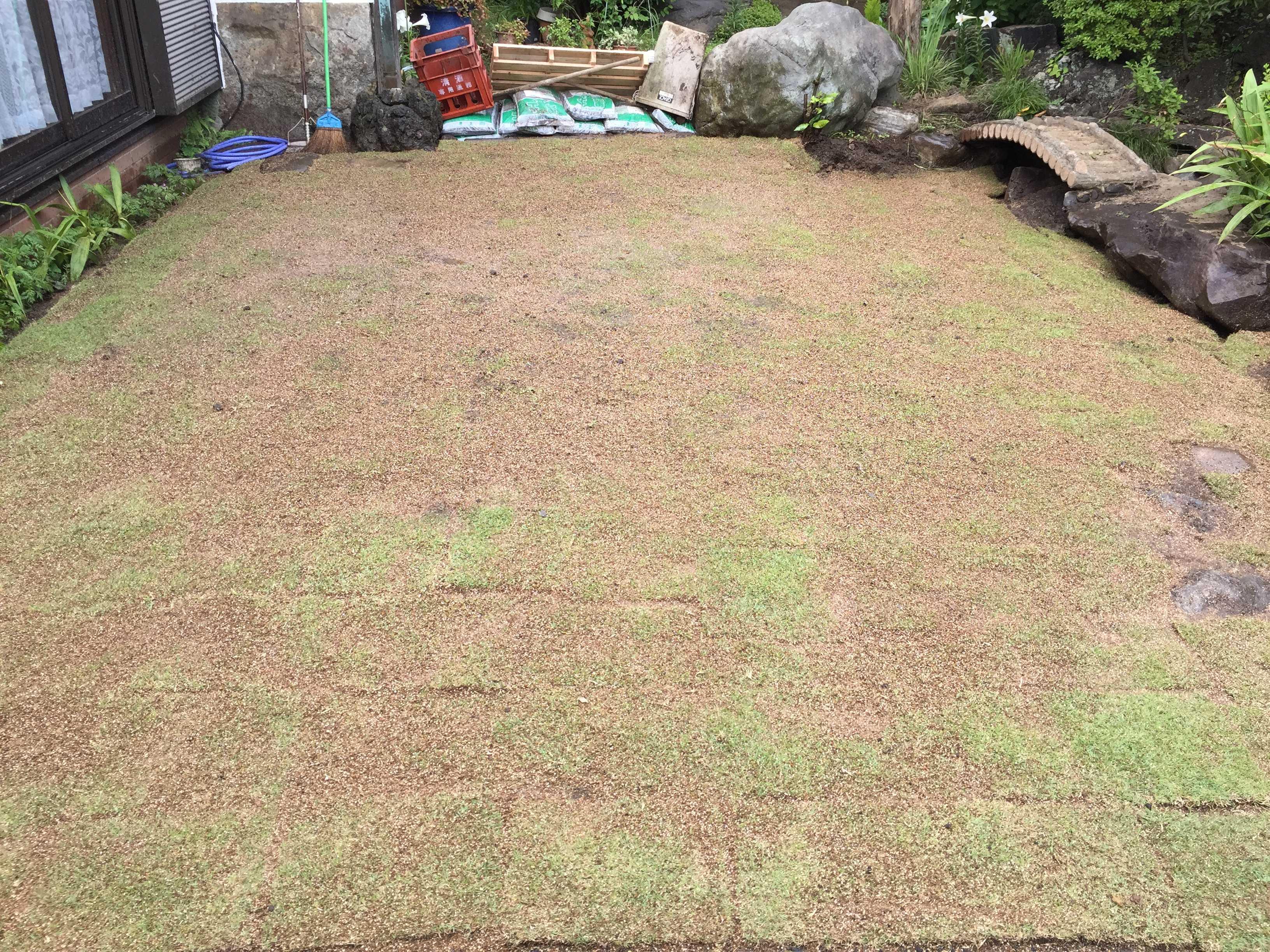 TM9のベタ張り(芝生張り)