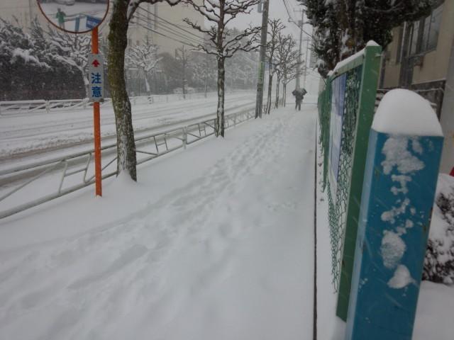 雪で埋まったムラウチドットコム本社前の歩道