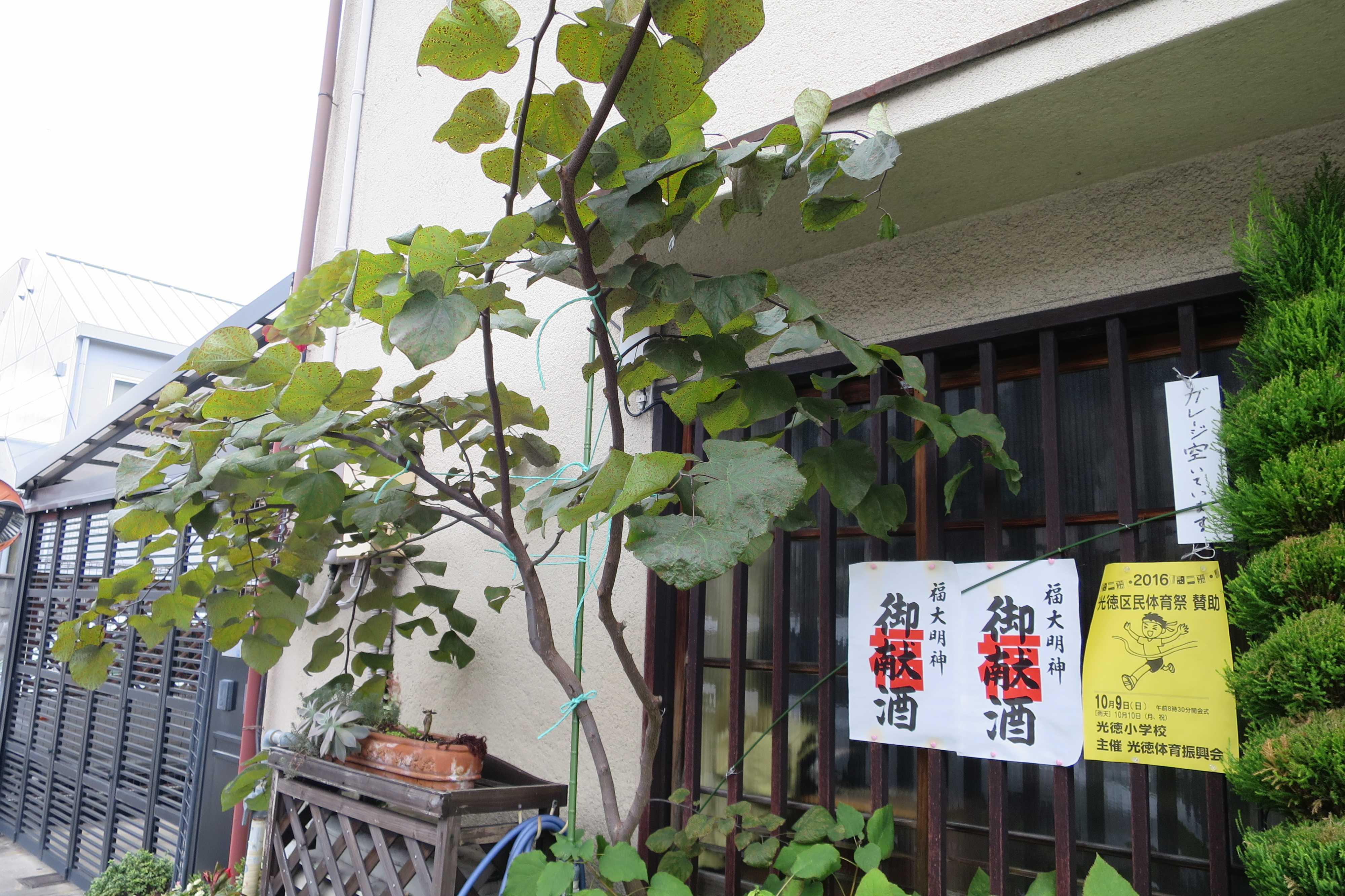 京都 - 福大明神 御献酒